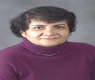 Prof Giti A. Khodaparast