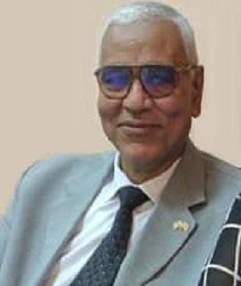 Abdelmonem Awad Hegazy